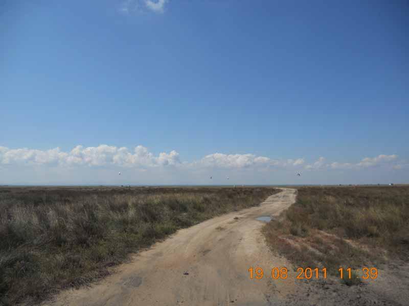 дорога Арабатская стрелка